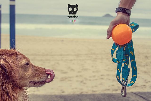 zeedog1