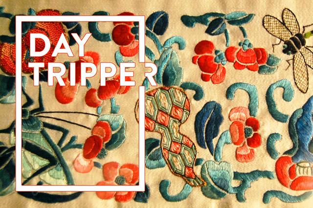 day_tripper3