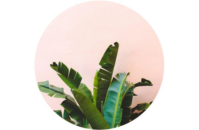bola_mari_verde