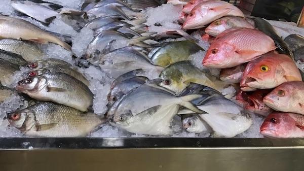 Fraud in Canada fish market