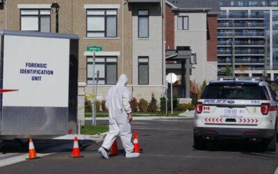 تازهترین گزارش پلیس درباره قتل مهدی امین