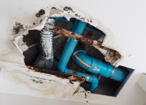 Plumbing Leaks Waste Millions Every Year!