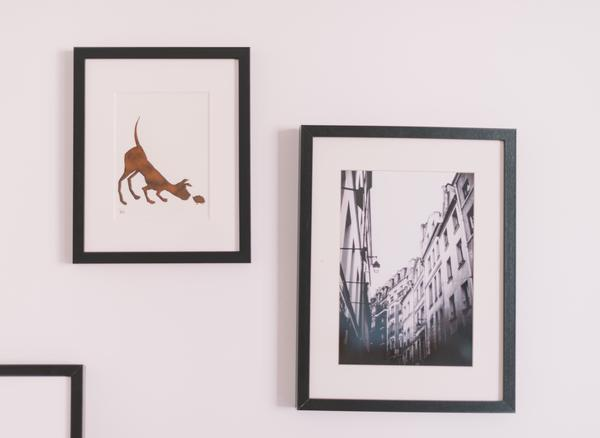 Classic Frame Color Combinations for a Gorgeous Gallery Wall