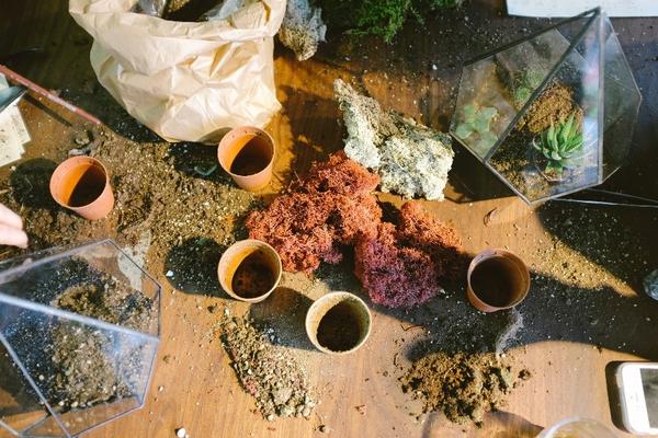 Use Frames to Create a Faux Garden