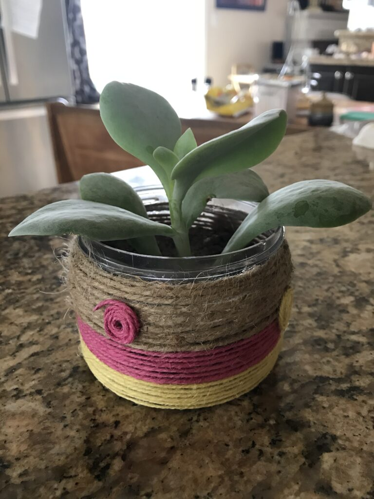 Earth Day Planter