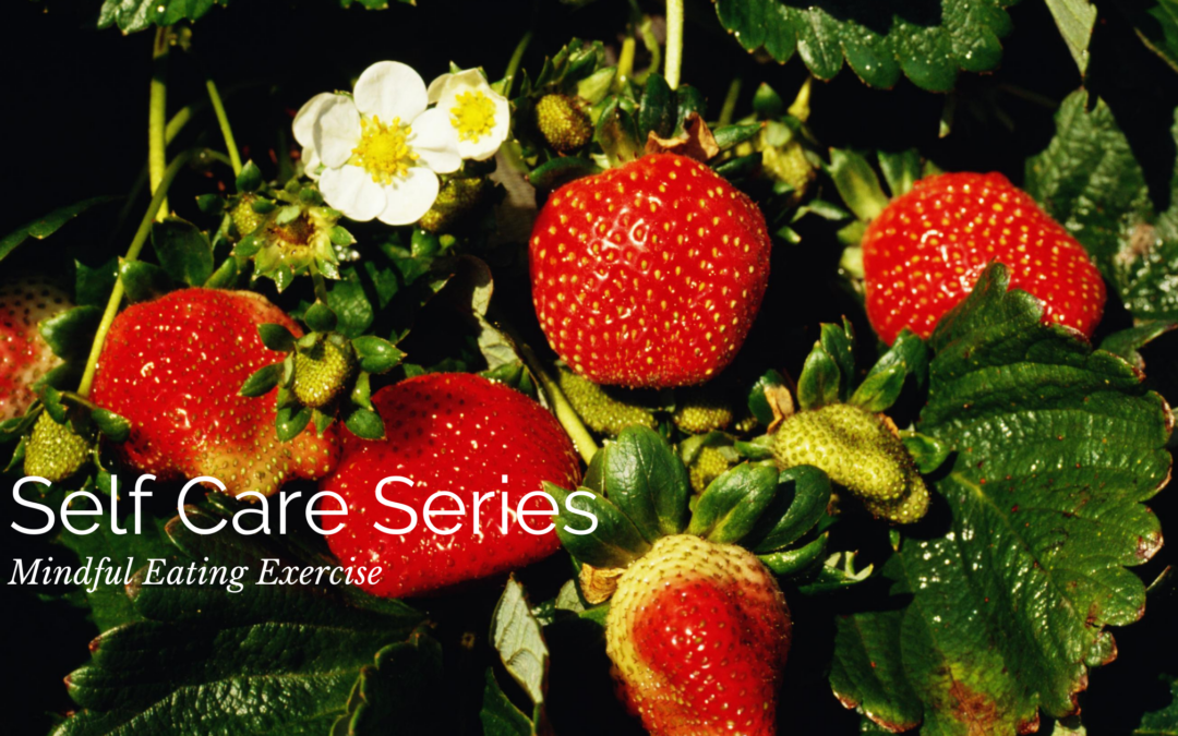 Self Care Series: Mindful Eating Exercise