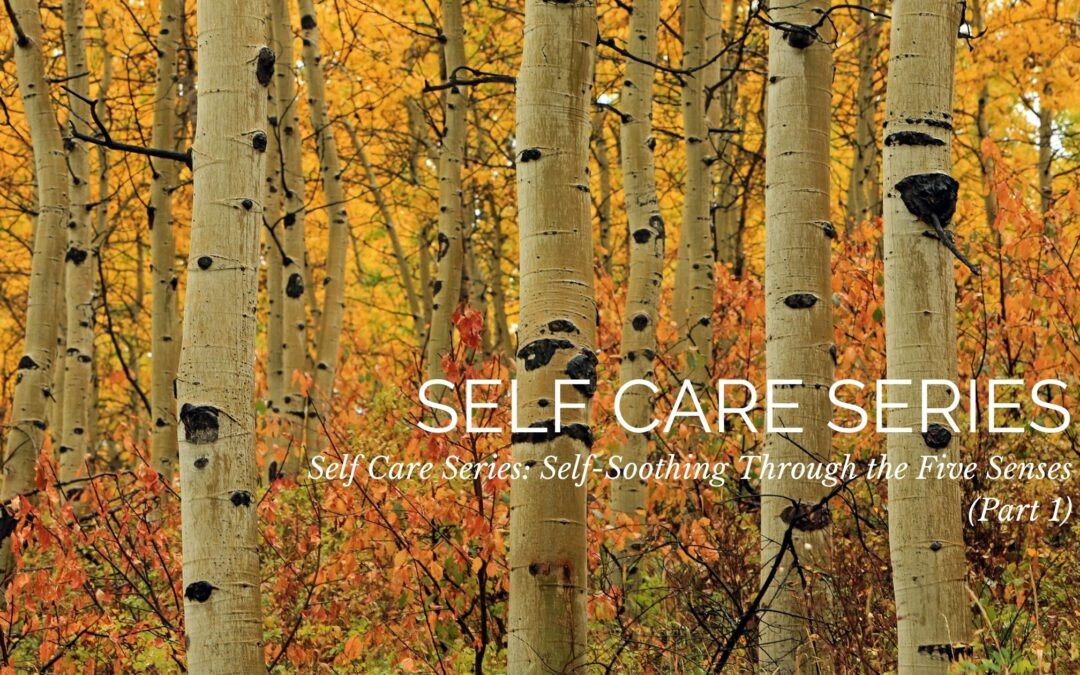 Self Care Series: Self-Soothing Through the Five Senses (Part 1)