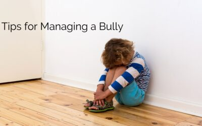 Tips for Managing a Bully