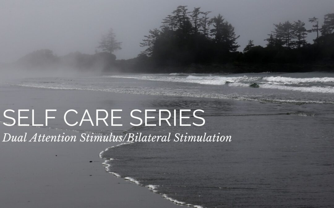 Self Care Series: Dual Attention Stimulus/Bilateral Stimulation