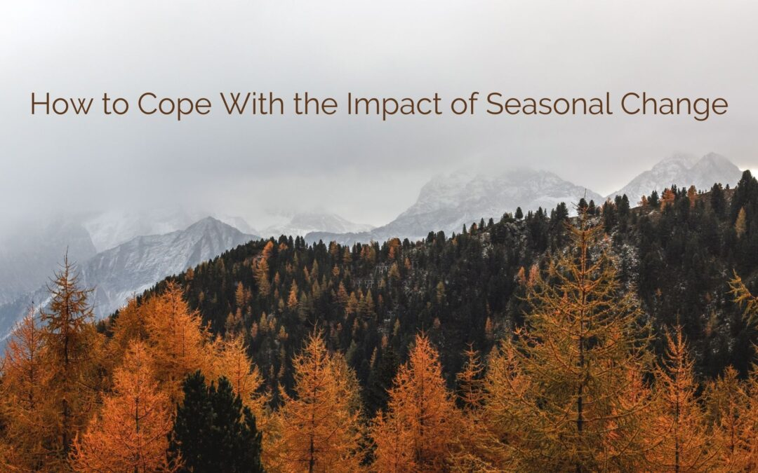 How to Cope With the Impact of Seasonal Change