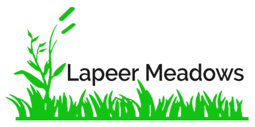 Lapeer Meadows MHC