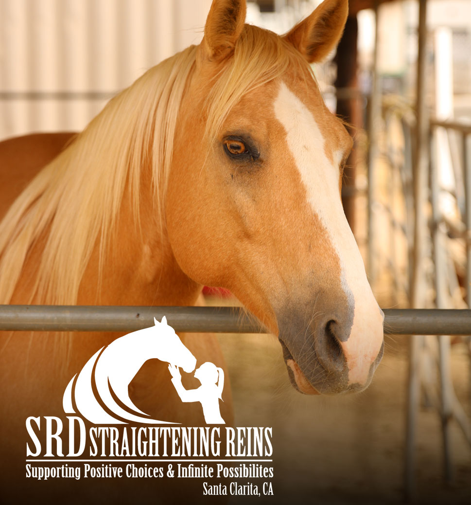 Non Profits We Love SRD Straightening Reins