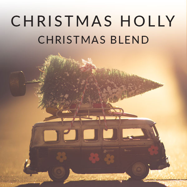 Home Christmas Holly