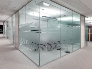 Frameless Glass Partition 1