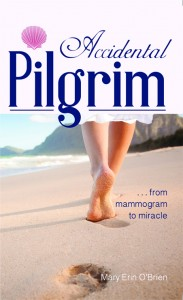 Accidental Pilgrim Cover Small