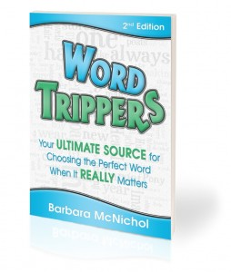 WordTrippers2Cvr3DWT book