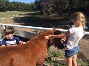 Learning to handle ponies is all part of our Saddle Club programme
