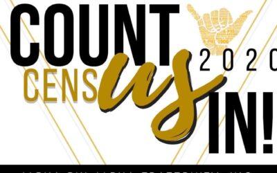 Census (Count Us In)