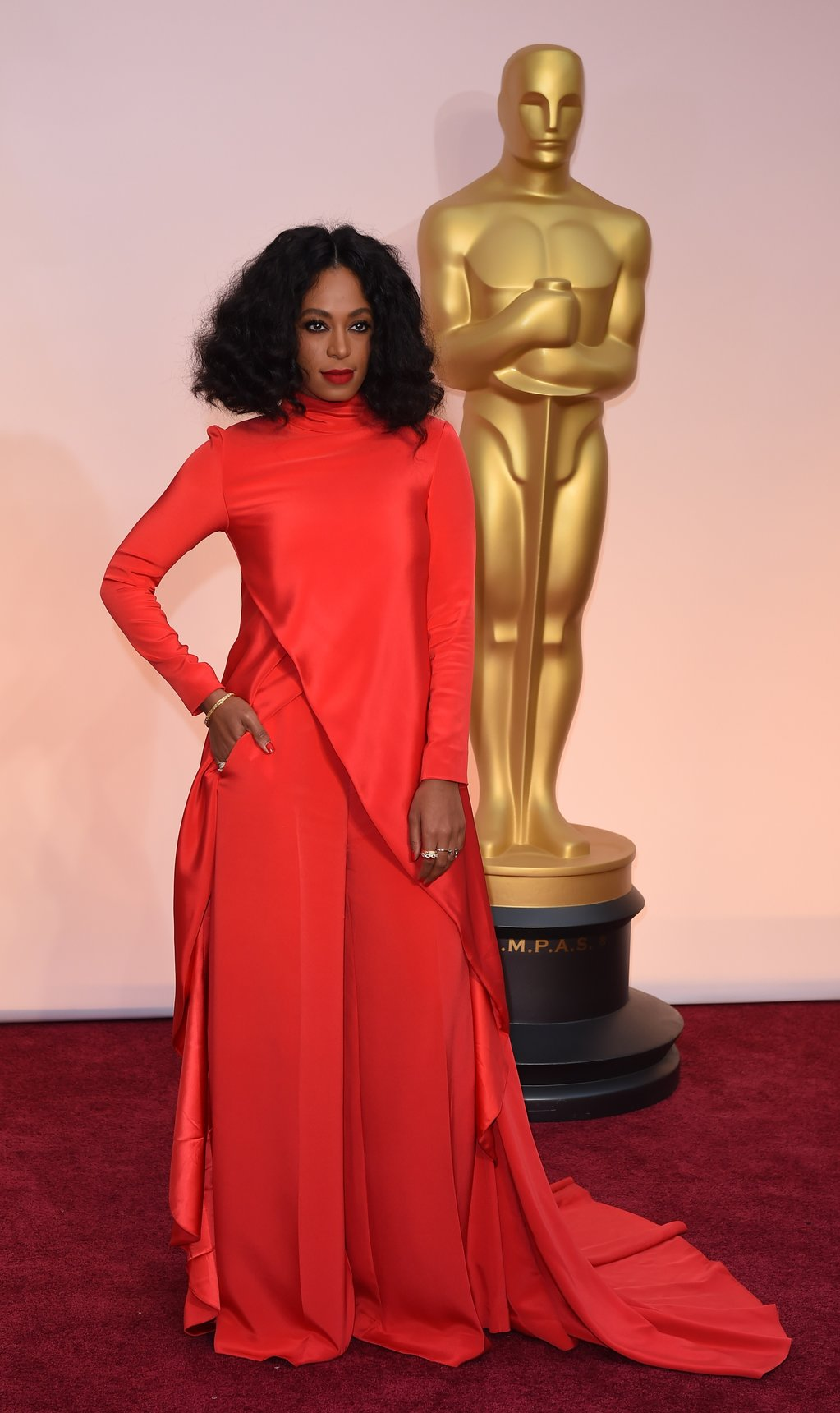 solange-knowles-oscars-red-carpet-2015