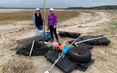 Earth Day ECF Beach Cleanup