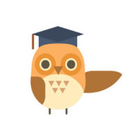 college-owl