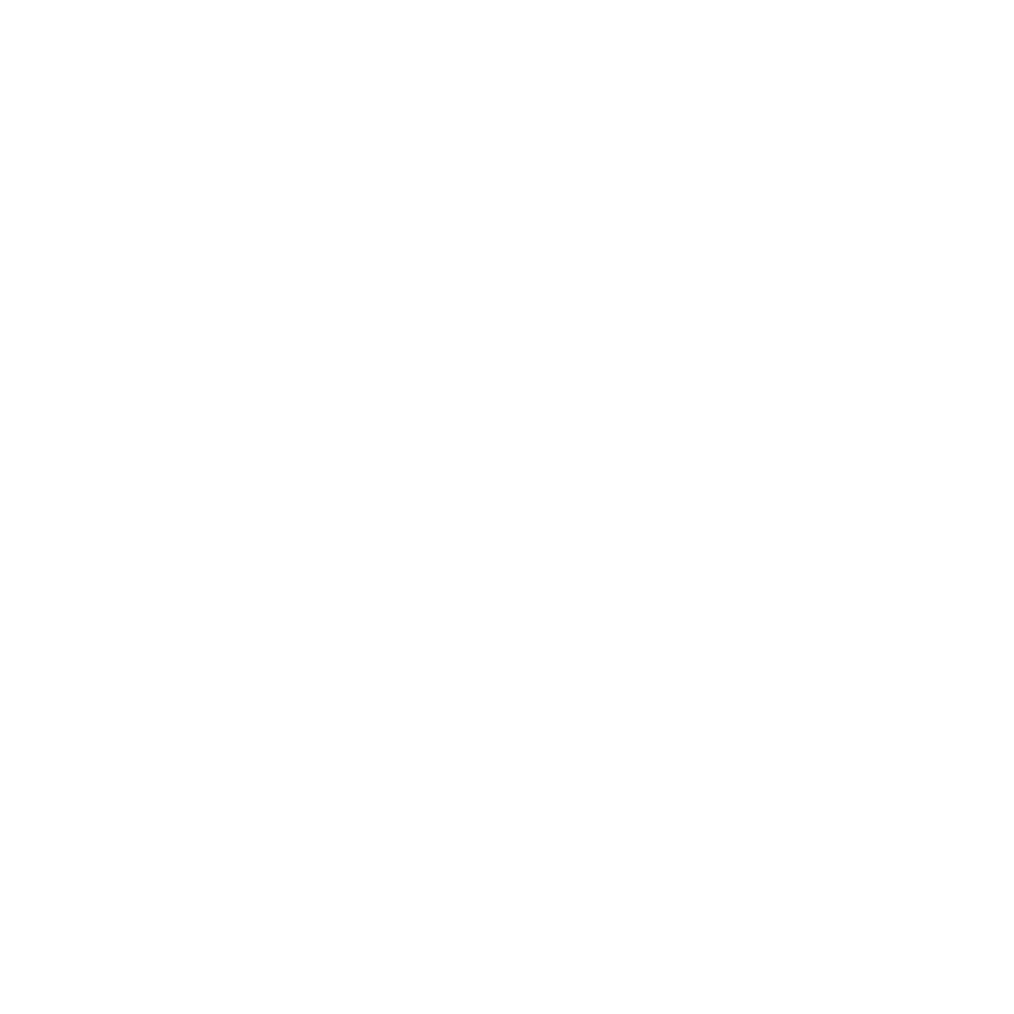 LINUS ALARM CORP