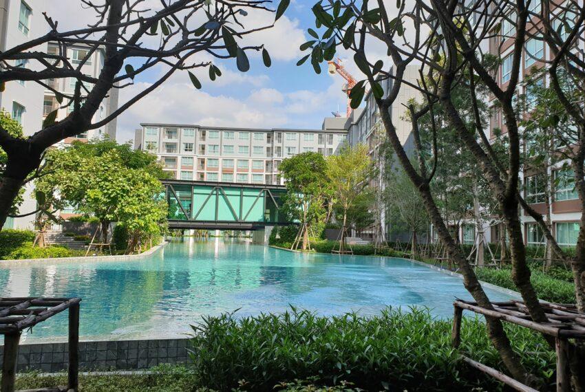 dcondo-chiang-mai-condo-rent-pool