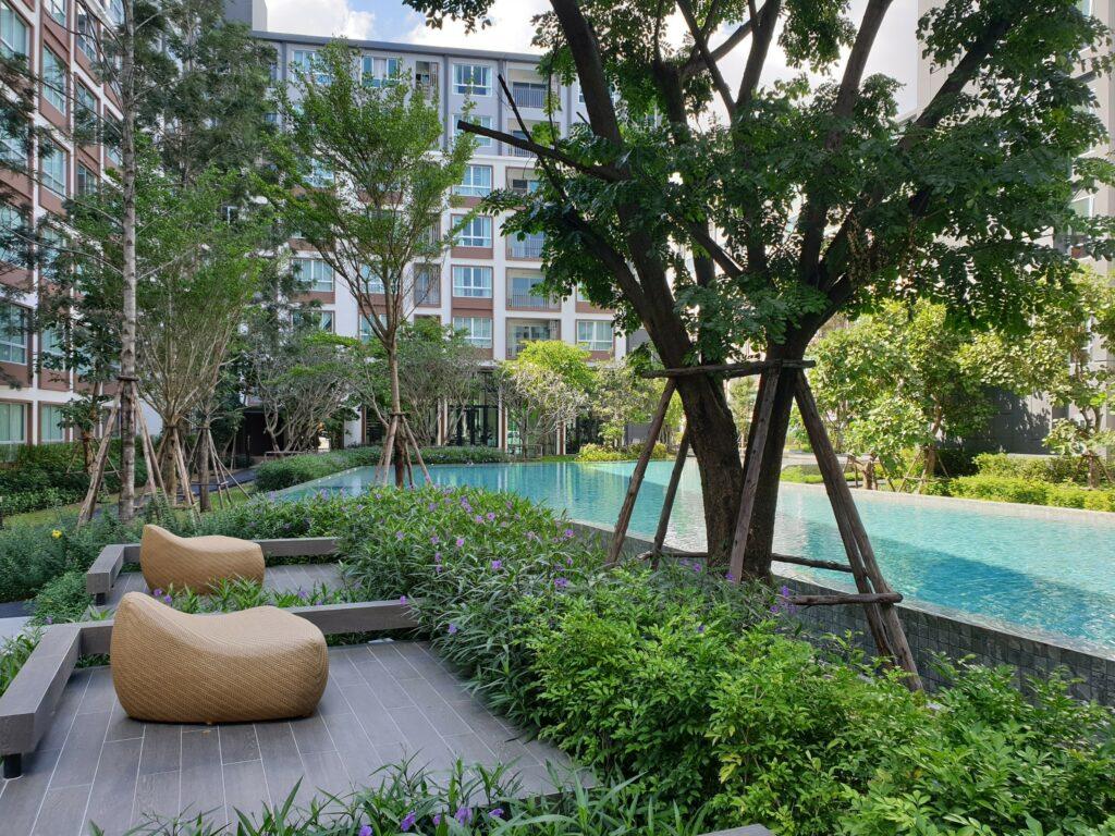 dcondo-ping-garden-pool