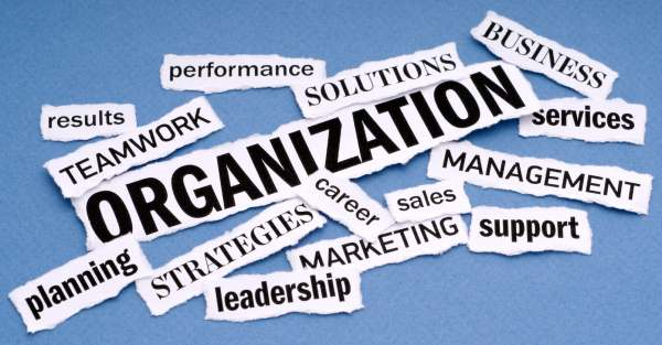 Essential features of an organization