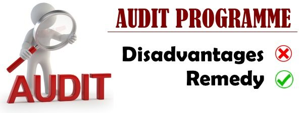 Audit Programme - Disadvantages and Remedy