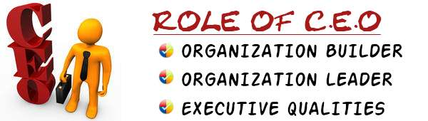 Role of chief executive officer in an organization