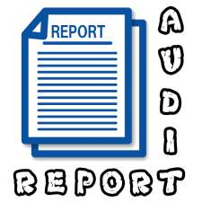 Audit Report