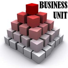 Business Unit