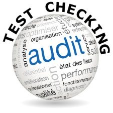 Audit Test Checking