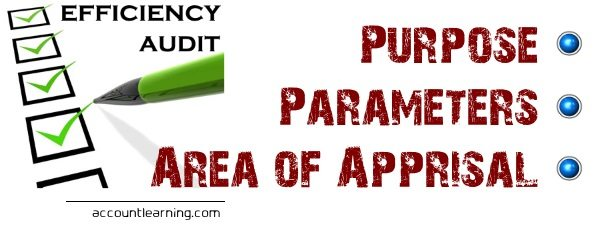Efficiency Audit - Purpose, Parameters, Area of Appraisal