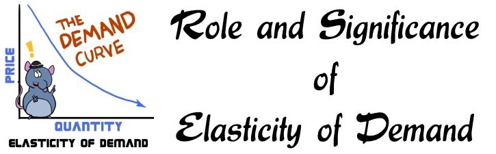 importance of elasticity of demand in managerial decision making