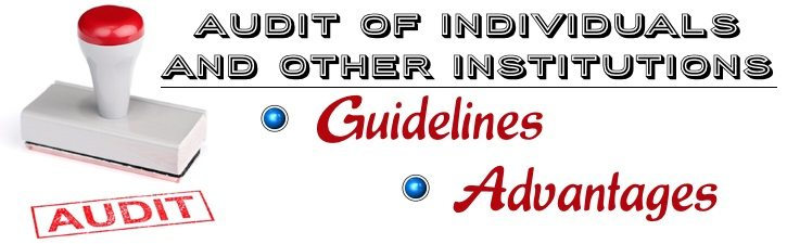 Audit of Individuals and Other Institutions