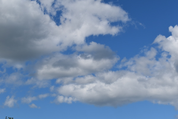 Oconto's blue skies at the FishInn