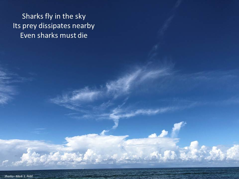SharksInTheSkyBroadside