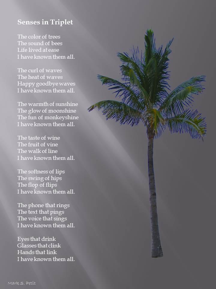 Senses in triplet poem