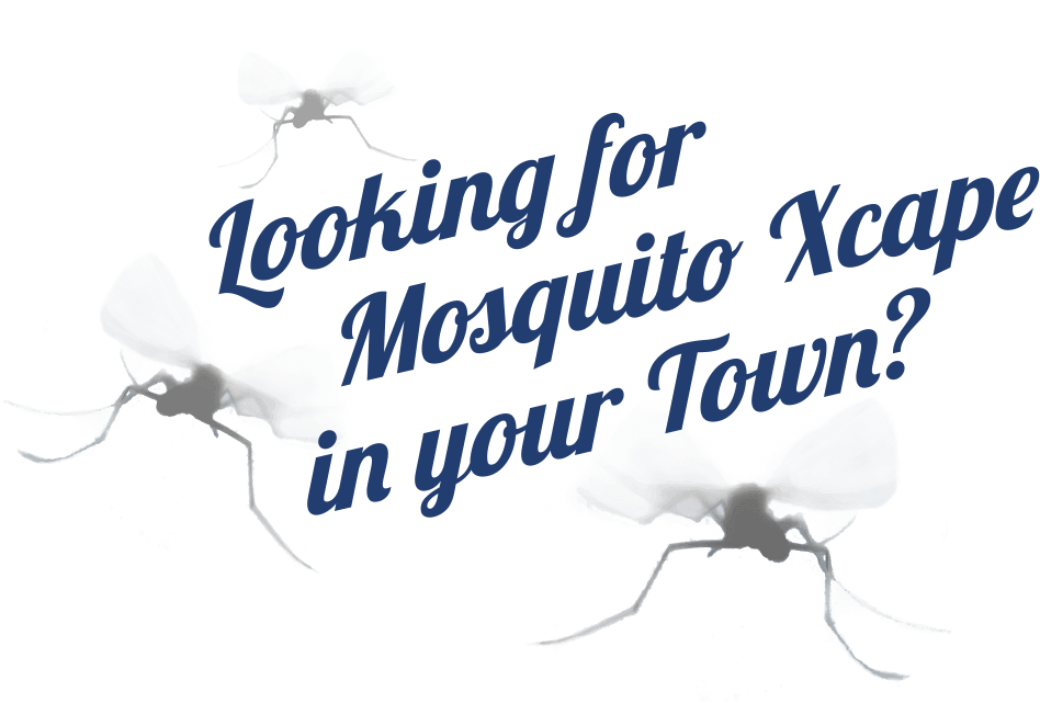 Looking-Mosquito-Excape-948x641-reduced