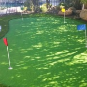 Outdoor Golf Putting Green