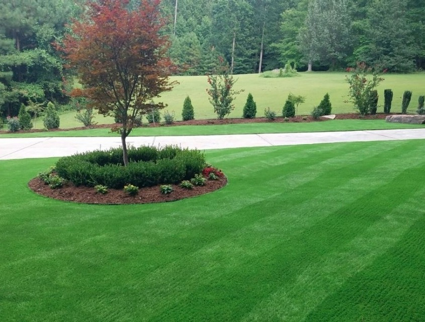 Artificial Putting Green Installation in Springdale