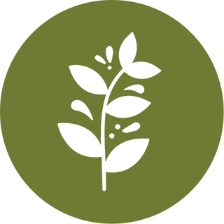 Plant Resources