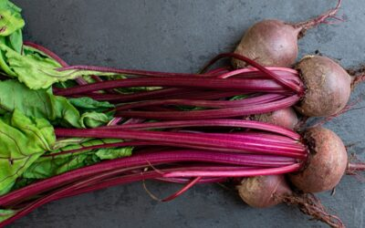 Salt-Roasted Beets with Pickled Cherries, Creamy-Roasted Zucchini Purée, and Lemon Olive Oil Dressed Spinach