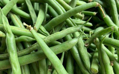 Summer Green Beans