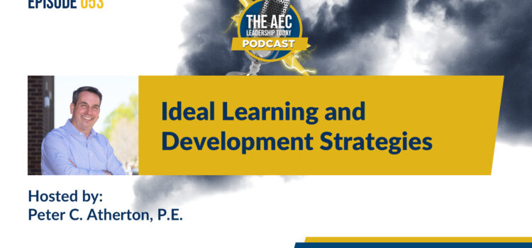 Episode 053: Ideal Learning and Development Strategies