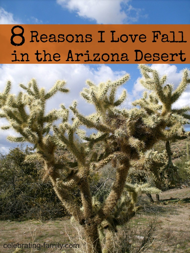 Eight Reasons I Love Fall in the Arizona Desert