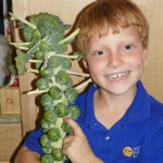 Five Ways to Get Your Kids Excited About Produce