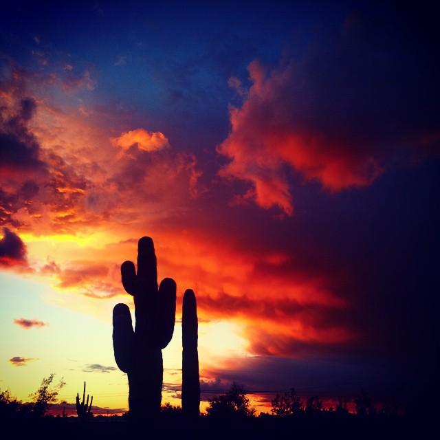 Arizona Skies - by Janice Stenglein